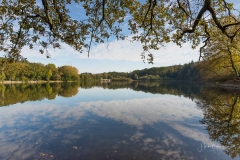 Möhnesee-Herbst-46