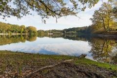 Möhnesee-Herbst-47