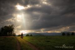 Naturweg durch die Hochheide