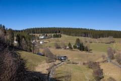 Nesselbach-im-Fruehjahr-02