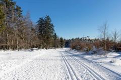 Niedersfelder Hochheide Winter 02