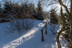 Niedersfelder Hochheide Winter 03