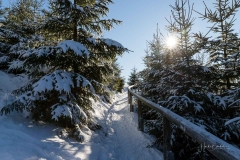 Niedersfelder Hochheide Winter 05