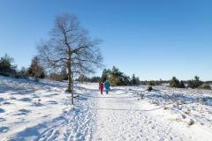Niedersfelder Hochheide Winter 10