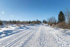 Niedersfelder Hochheide Winter 12