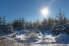 Niedersfelder Hochheide Winter 15