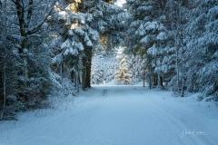 Niedersfelder Hochheide Winter 16