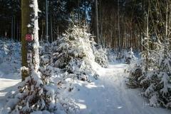 Niedersfelder Hochheide Winter 20