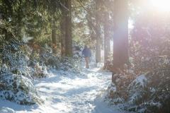 Niedersfelder Hochheide Winter 22