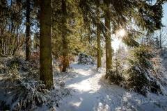Niedersfelder Hochheide Winter 23