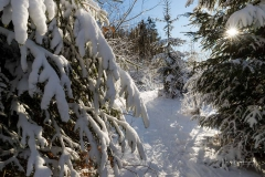 Niedersfelder Hochheide Winter 26