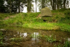 Niedersfelder-Hochheide-73