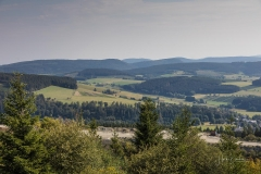 Niedersfelder-Hochheide-So2020-018