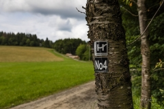 Nordenau_2021_059