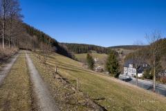 Nordenauer-Osterglockenweg-11