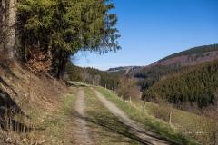 Nordenauer-Osterglockenweg-13