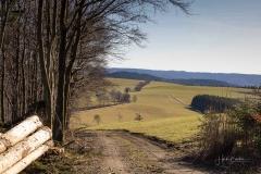Nordenauer-Osterglockenweg-15