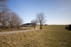 Nordenauer-Osterglockenweg-17