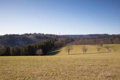 Nordenauer-Osterglockenweg-18