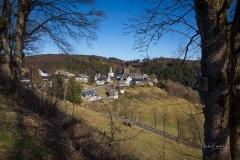 Nordenauer-Osterglockenweg-25