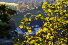 Oberkirchen-Herbst-2021-02
