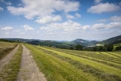 Oberkirchen-Sommer-2021-02