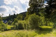 oberkirchen-im-sommer-12