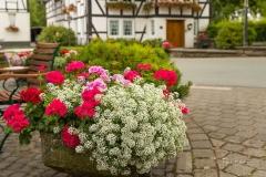 oberkirchen-im-sommer-29