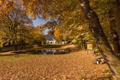 Ohlenbach-Herbst-01