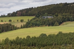 Ohlenbach-im-Sommer-2