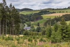 Ohlenbach-im-Sommer-4
