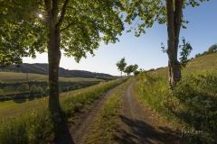 Fotoroute-Oberhenneborn-17