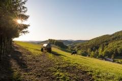 Fotoroute-Oberhenneborn-23