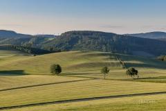 Fotoroute-Oberhenneborn-28