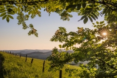 Fotoroute-Oberhenneborn-32