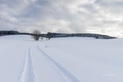Oberhenneborn im Winter 04
