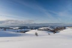 Oberhenneborn im Winter 31