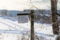 Oberhenneborn im Winter 37