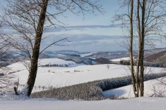 Oberhenneborn im Winter 39