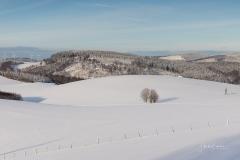 Oberhenneborn im Winter 43