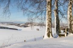 Oberhenneborn im Winter 46