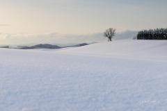 Oberhenneborn im Winter 53