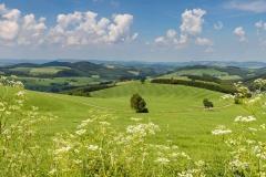 Oberhenneborner-Rundweg-Frühjahr-2