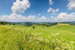 Oberhenneborner-Rundweg-Frühjahr-3