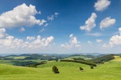 Oberhenneborner-Rundweg-Frühjahr-4