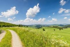 Oberhenneborner-Rundweg-Frühjahr-5