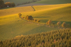 Oberhenneborner Rundweg Herbst 10