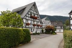 Saalhausen-im-Sommer-03