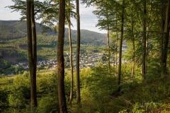 Saalhausen-im-Sommer-1