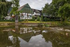 Saalhausen-im-Sommer-11